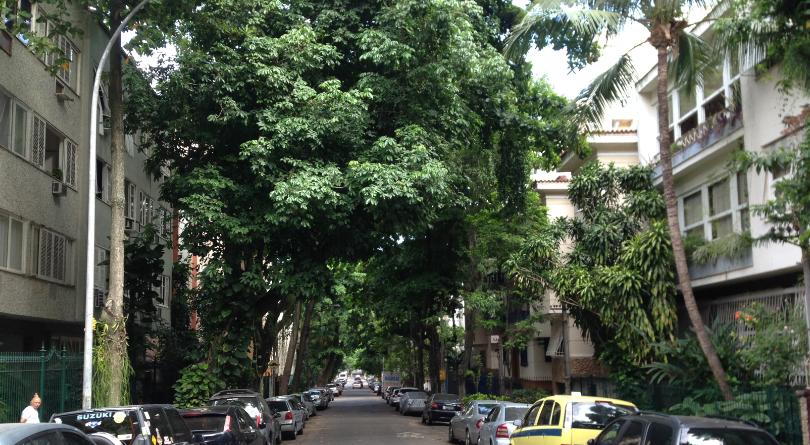 2015-03 - Rio - 0406 - Detalhe